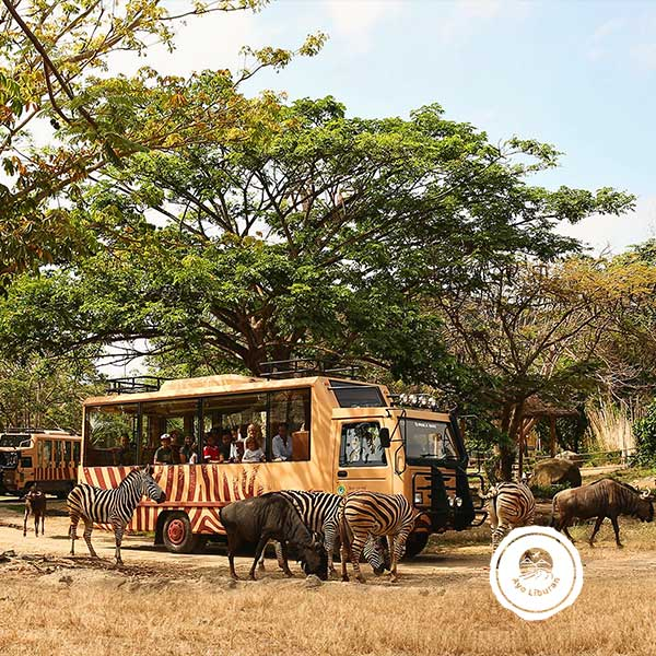 Bali-Safari-Park