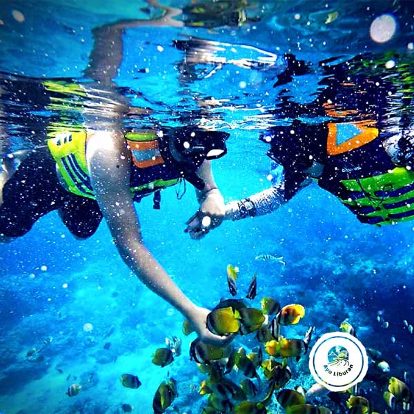Bali-Snorkelling