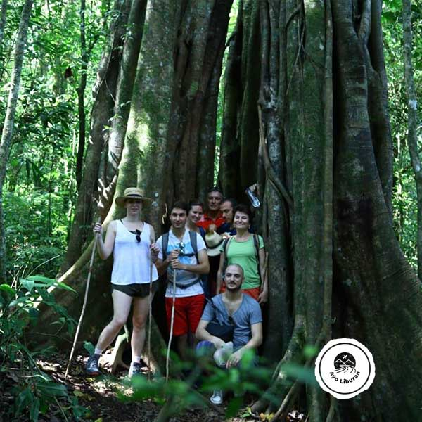Tamblingan-Jungle-Trekking